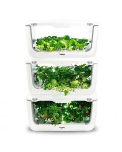 VegeBox Home impilati con verdure